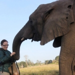 Animal welfare project in South Africa
