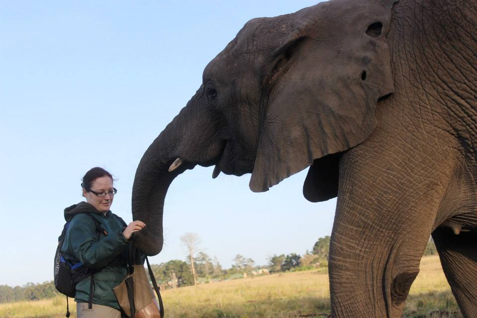 Volunteering with elephants