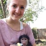 Monkey volunteer