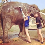 Two volunteers wash down a rescued elephant at the sanctuary in Thailand