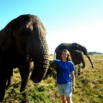 Oyster volunteer with elephants South Africa