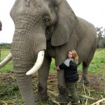 Oyster volunteer with elephant Harry