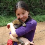 Volunteer with baboons in South Africa