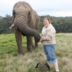 Oyster volunteer with elephant in South Africa