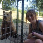 Oyster Reviews: volunteering with bears in Romania