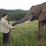Oyster volunteer with elephant