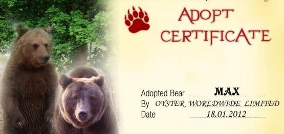 Adopt a bear certificate