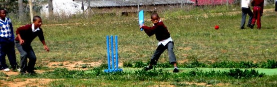 cricket coaching south africa