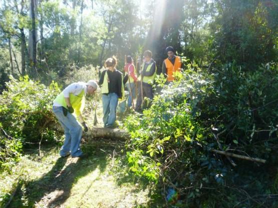 Gap year conservation volunteering in Australia