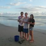 Volunteer with turtles in Costa Rica