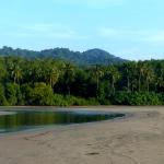 Beautiful turtle nesting beach in Costa Rica