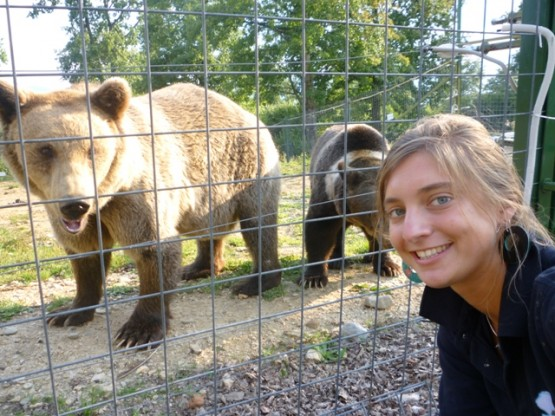 Volunteering at the bear sanctuary in Romania
