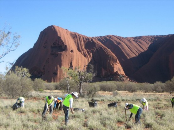 Become a conservation volunteer in Australia's northern reaches