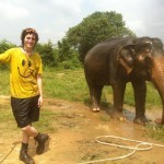 Wildlife volunteering Thailand