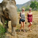 Oyster reviews: volunteering with elephants in Thailand