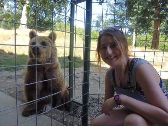 Volunteering in Romania with bears