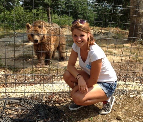 Volunteer work with bears in Romania