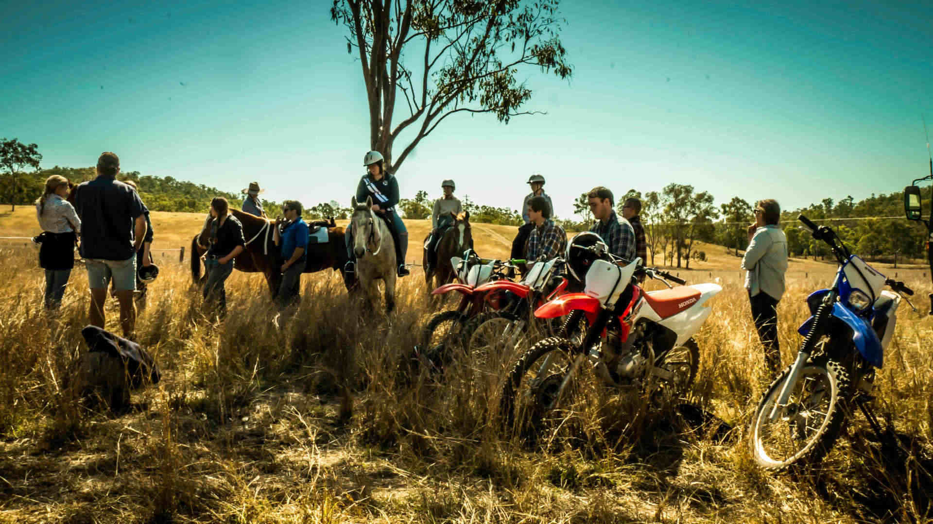 Paid Farm Work in Australia | Fruit Picking Jobs & Ranch