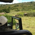 Monitoring wildlife in the game reserve on the game ranger course