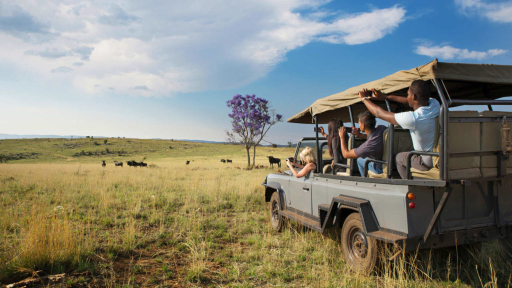 A group of volunteers observe Africa animals from a distance in a game vehicle