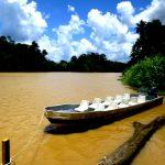 A boat on the Kinabatangan River
