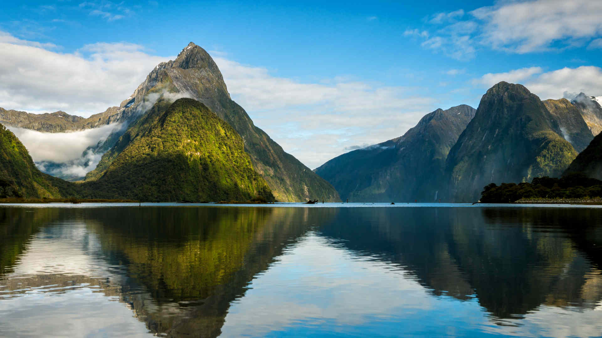 Gap Year New Zealand & Volunteer Work in New Zealand   Oyster Worldwide