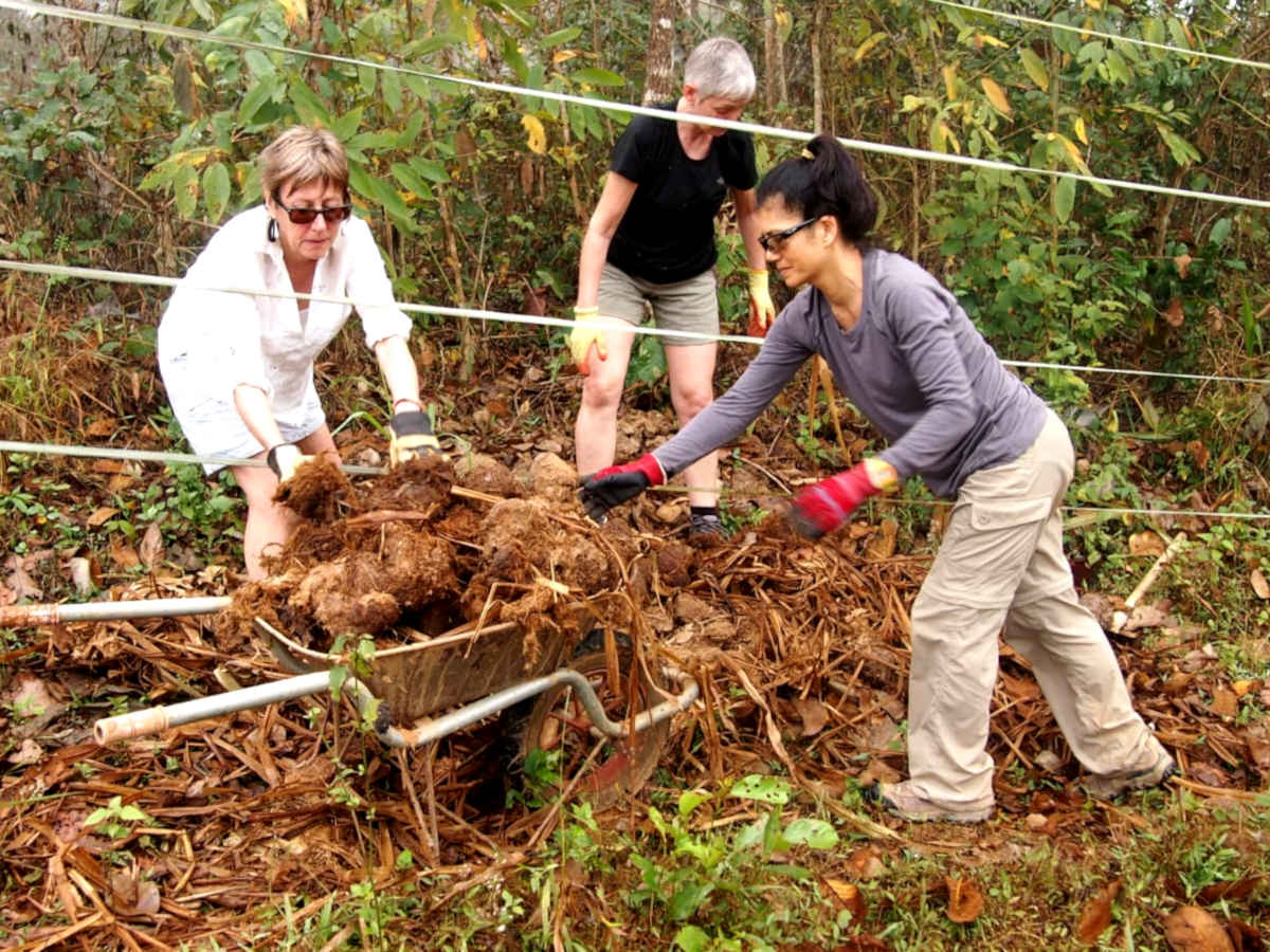 Volunteers help to collect dung at the elephant rescue centre
