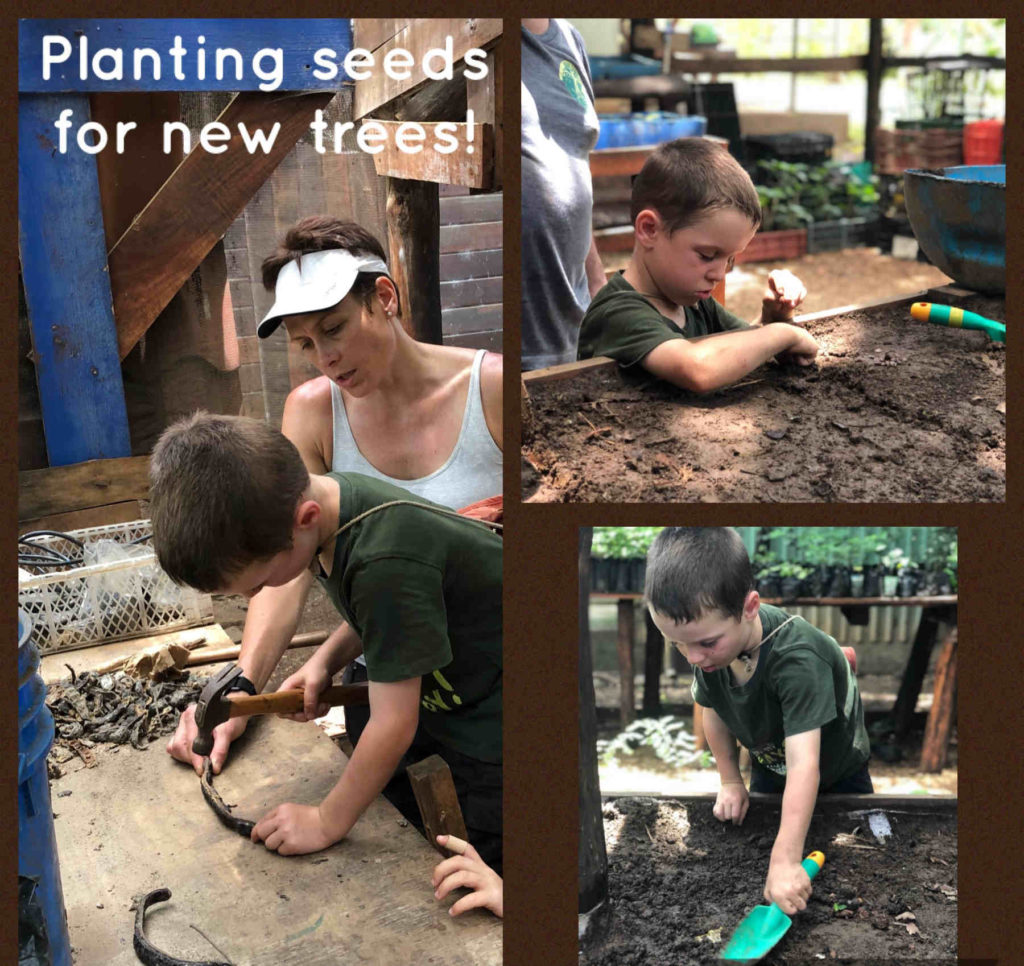 A mother and her children plant seeds for new trees