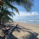 Beach where the turtle conservation project in Costa RIca takes place