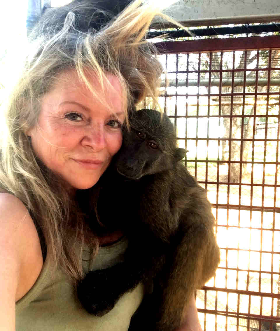 Volunteer at the monkey rescue centre in South Africa