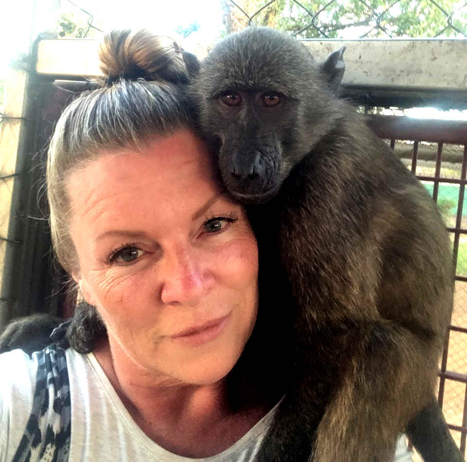 A volunteer spends time with a primate a the monkey rescue centre in South Africa