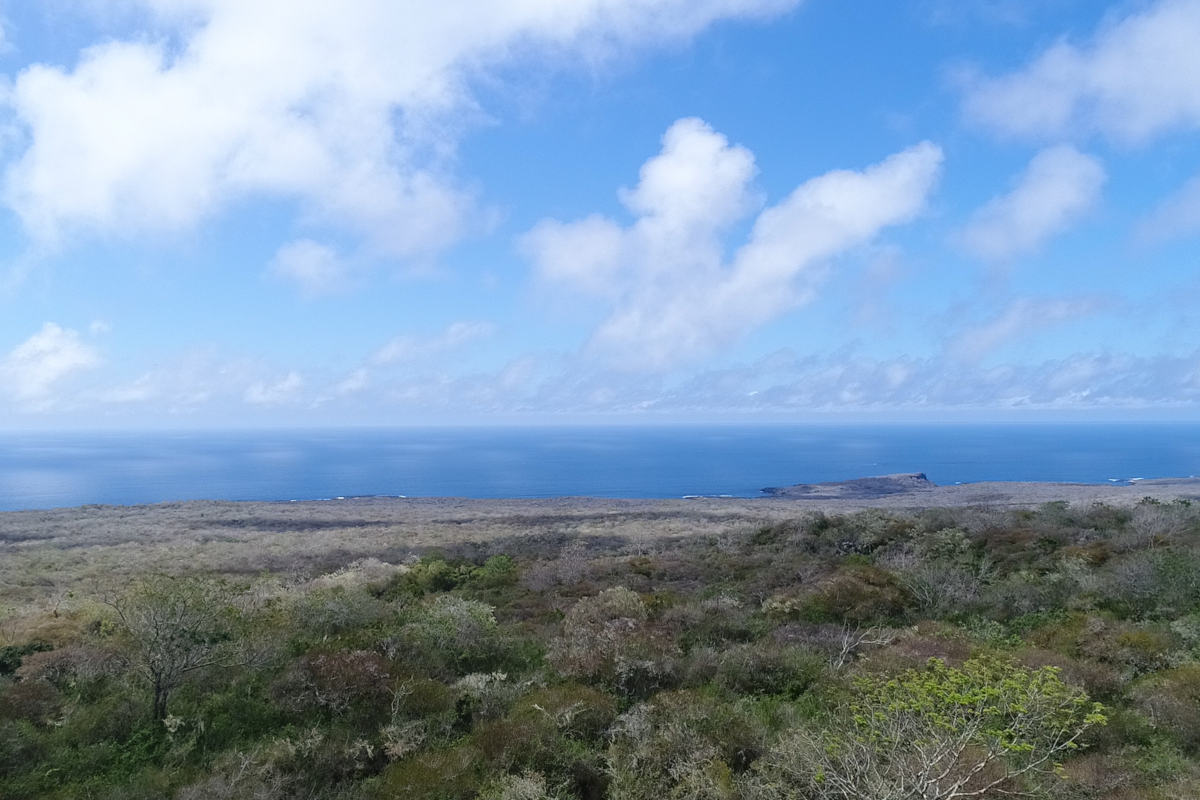 The beautiful view over San Cristobal Island from the conservation project