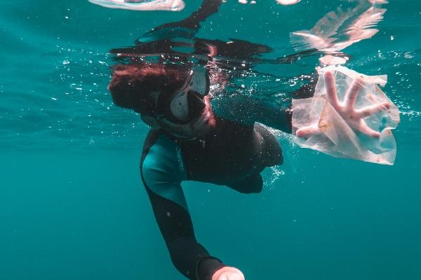 Marine Conservation Diver