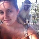 Volunteering with monkeys in South Africa