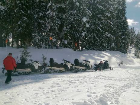 snowmobiles lined up in Callaghan Valley