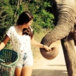 Elephant sanctuary volunteering in Thailand