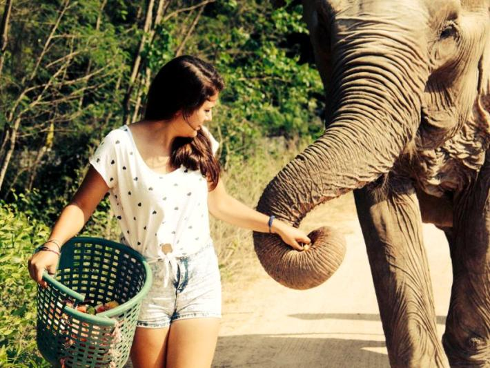 Oyster volunteer caring for elephants in Thailand
