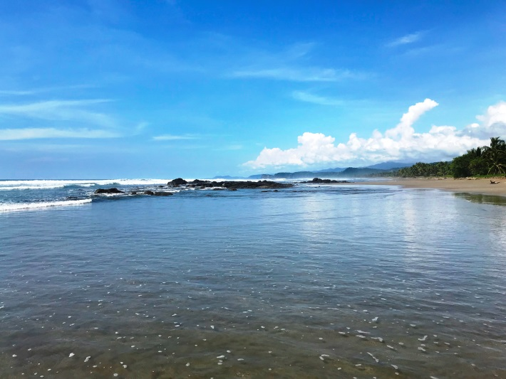 The beautiful sea turtle conservation beach in Costa Rica