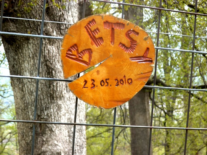 Betsy's plaque, commemorating her arrival to the bear sanctuary
