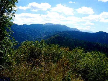 Explore the Carpathian Mountains
