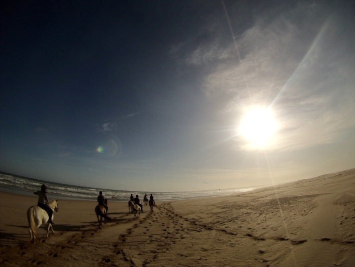 Volunteers enjoy hores riding on the beach in South Africa on the Garden Route Trip