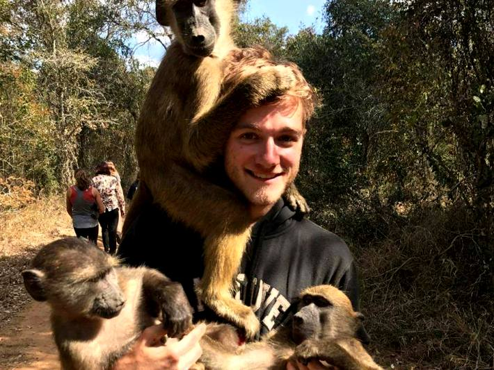 A volunteer cares for monkeys in South Africa