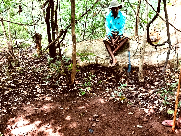 A local looks on over the sand pits that volunteers have made in forested areas in Sri Lanka. The pits are created so that you can identify which animals have passed through the area based on their footprints and droppings.