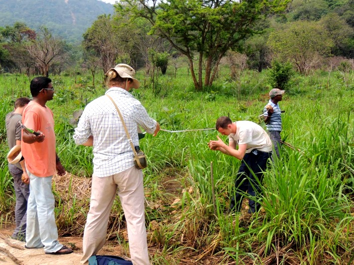 Volunteers create a monitoring area to understand more about elephant behaviour
