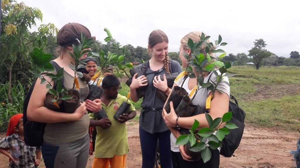 Participants on our Sri Lanka volunteer programme help to carry new orange trees to the fields for planting. These oranges will become a significant part of the village's economy, and protection from the elephants