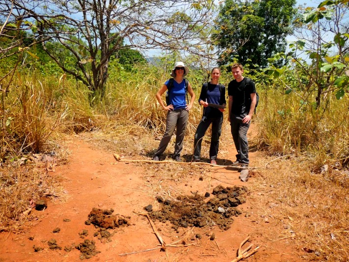 Volunteers in Sri Lanka analyse elephant poo in conservation initiative