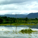 A view over the lake that surrounds the elephant sanctuary in Laos