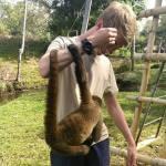 Volunteering at the wildlife sanctuary in Ecuador meets a monkey