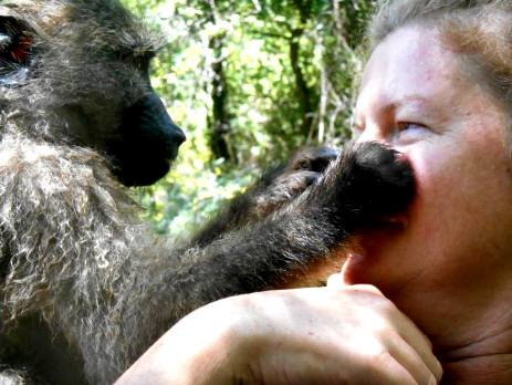 Volunteering with monkeys is a heartwarming experience - especially when you create a real bond with a young one!