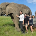 Elephant research South Africa